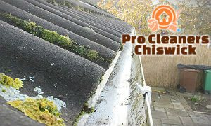 gutter-cleaning-services-chiswick